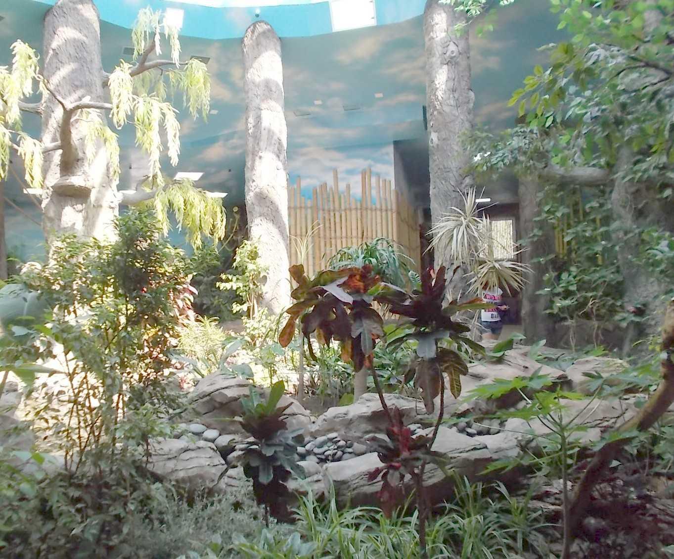 Новосибирский зоопарк (фото 10123)