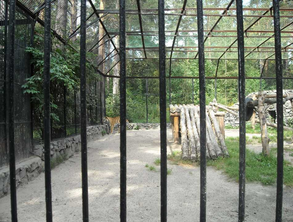 Новосибирский зоопарк (фото 2030)