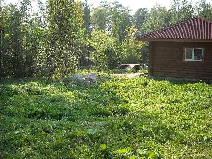 Новосибирский зоопарк (фото 2235)
