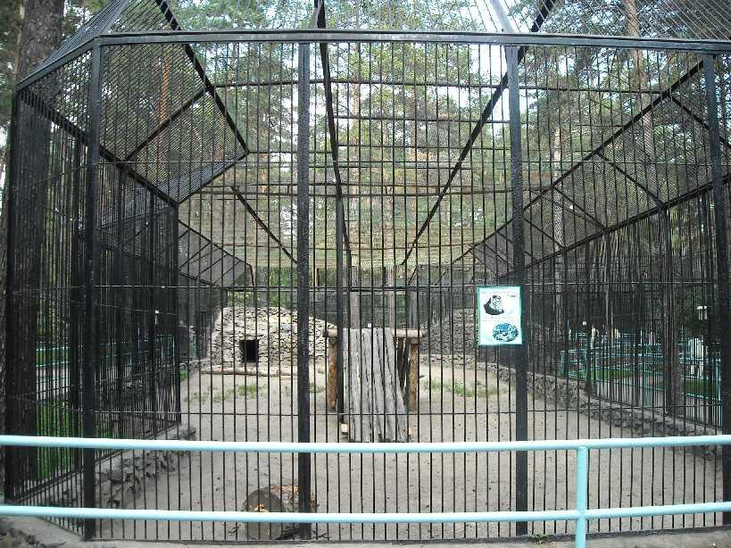 Новосибирский зоопарк (фото 2262)