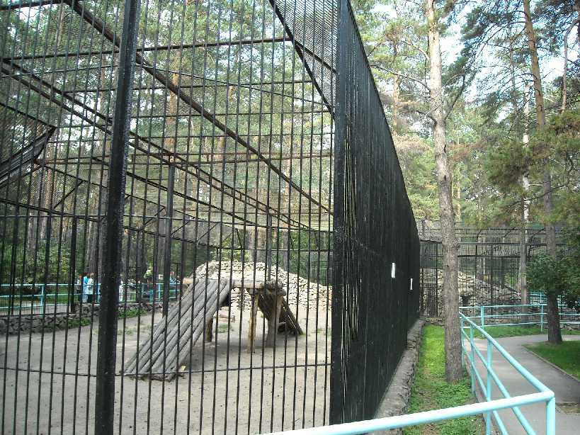 Новосибирский зоопарк (фото 2264)
