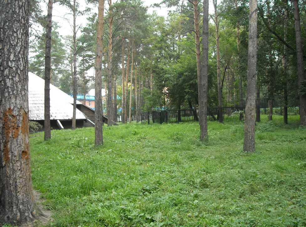 Новосибирский зоопарк (фото 2322)