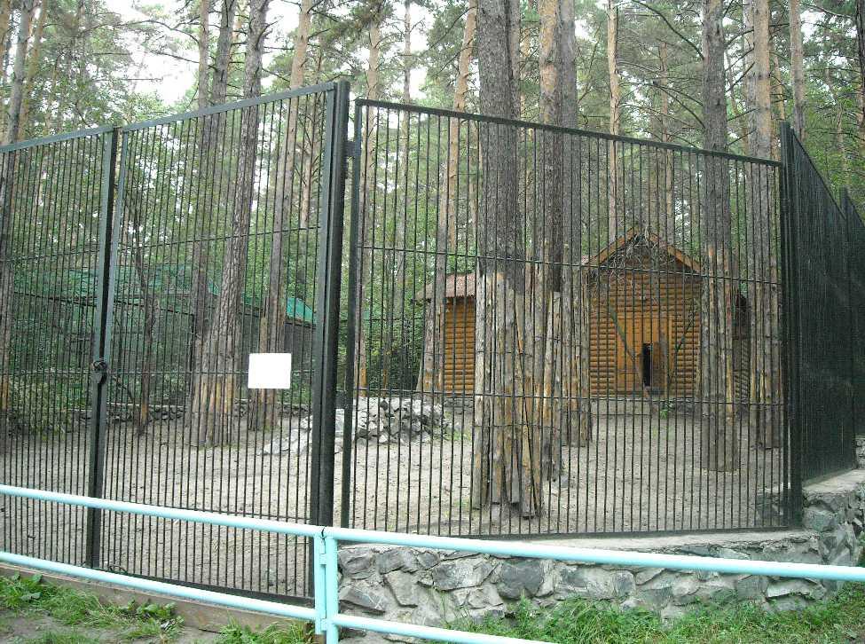 Новосибирский зоопарк (фото 2325)