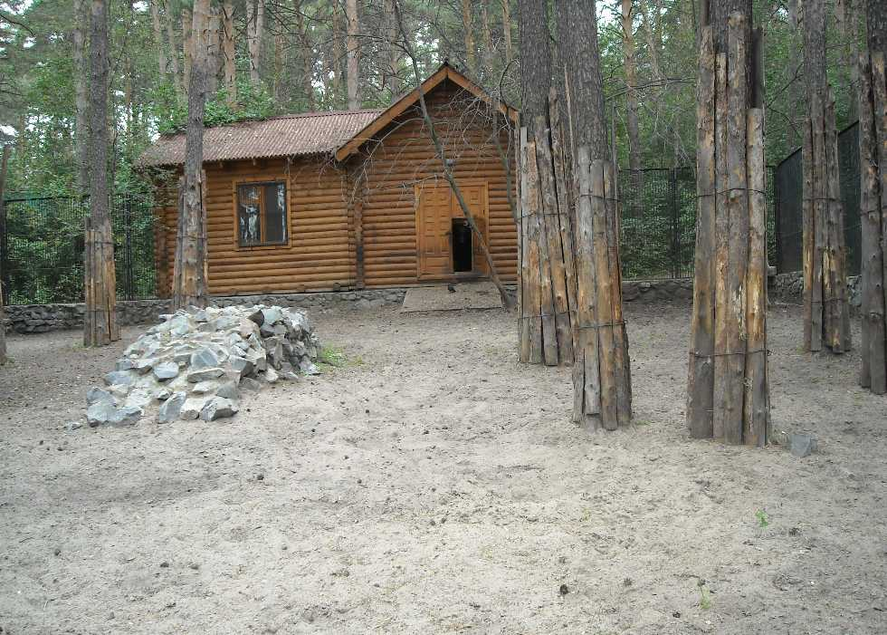 Новосибирский зоопарк (фото 2326)