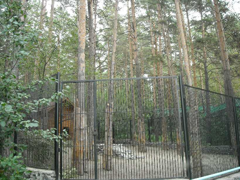 Новосибирский зоопарк (фото 2328)