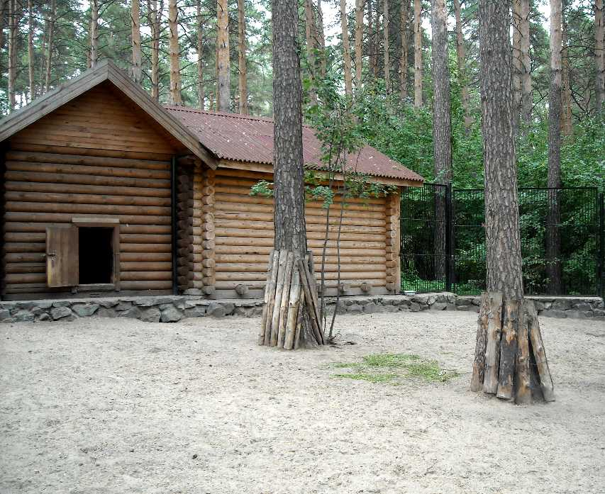 Новосибирский зоопарк (фото 2330)