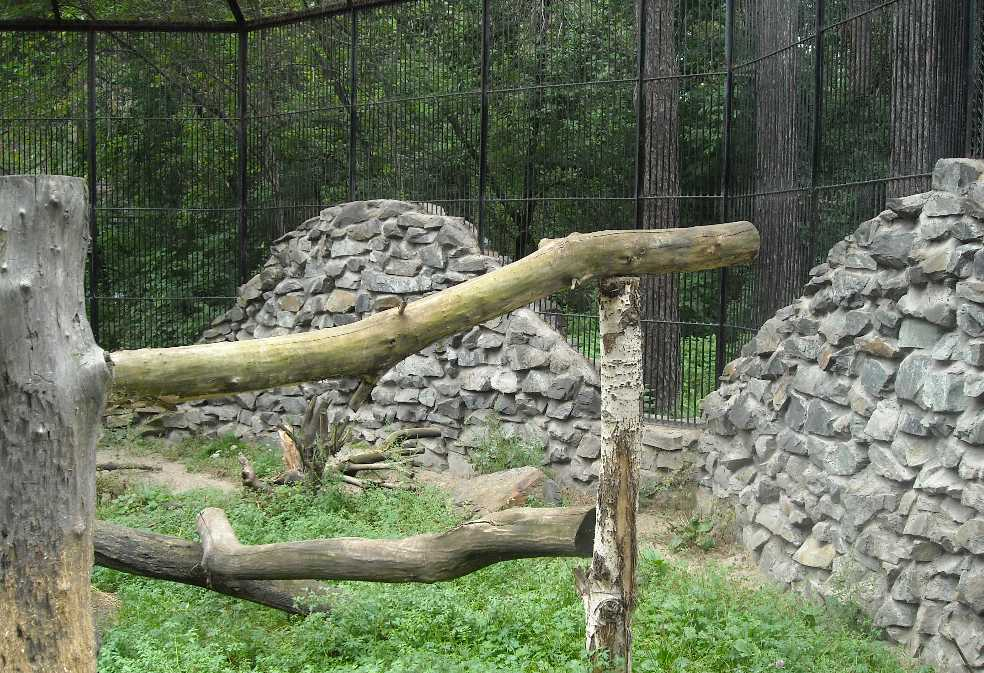 Новосибирский зоопарк (фото 2334)