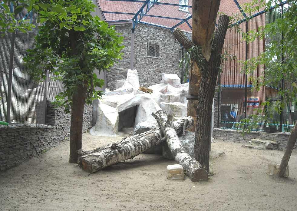 Новосибирский зоопарк (фото 2335)