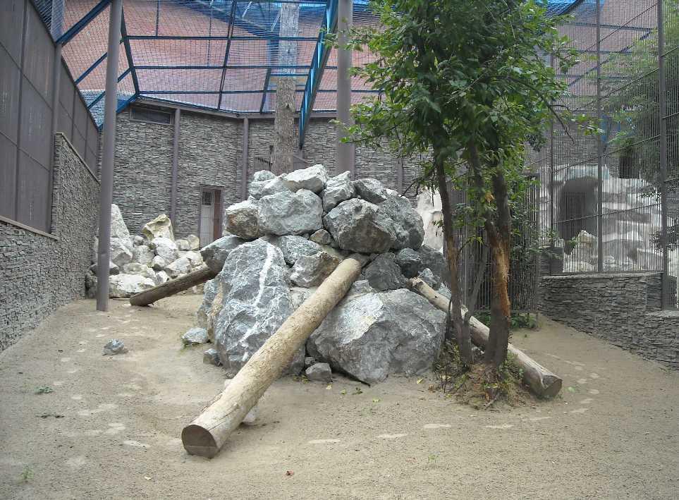 Новосибирский зоопарк (фото 2336)