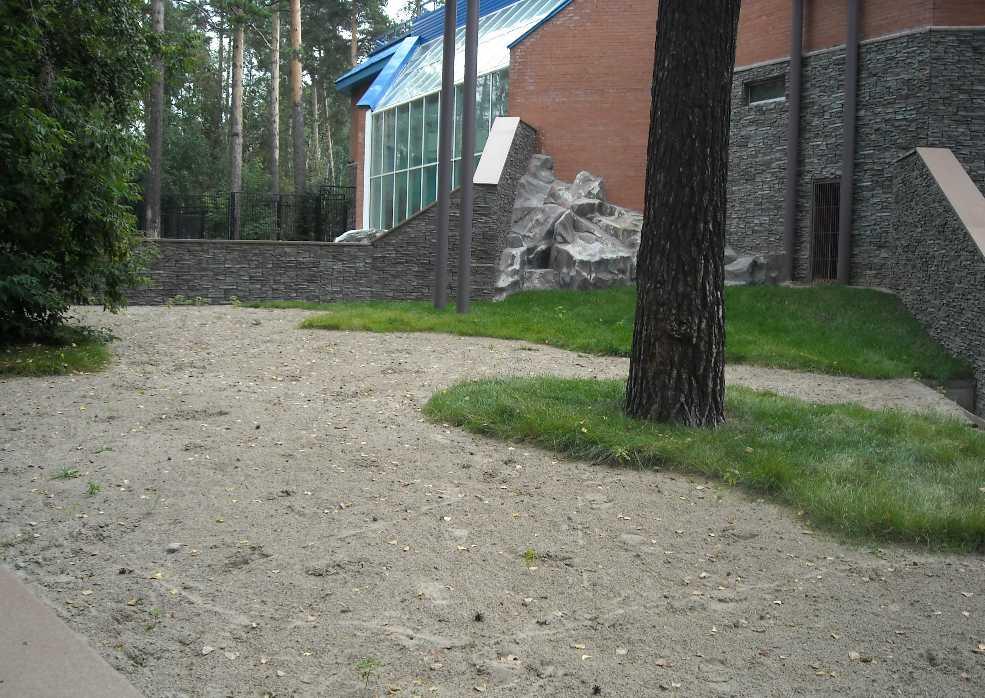 Новосибирский зоопарк (фото 2339)