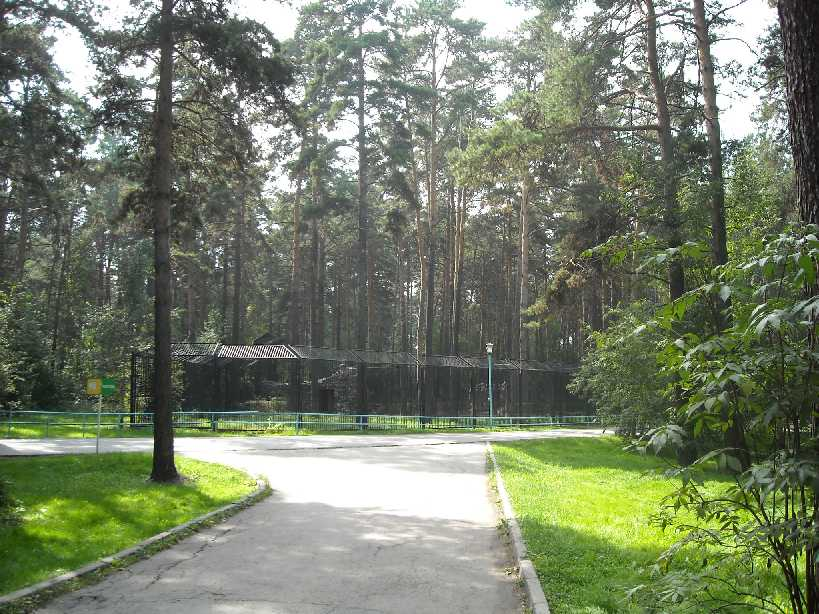 Новосибирский зоопарк (фото 2354)