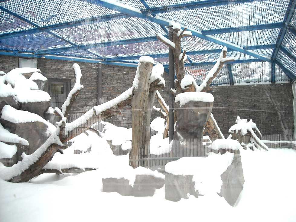 Новосибирский зоопарк (фото 2707)