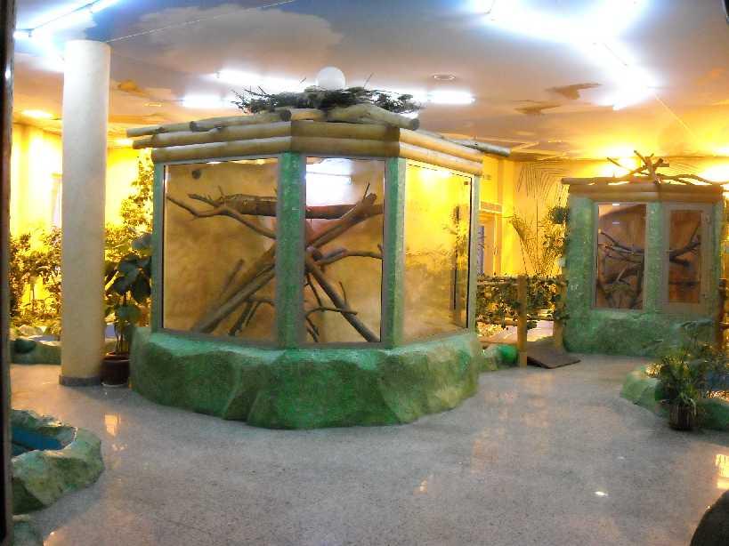 Новосибирский зоопарк (фото 2782)
