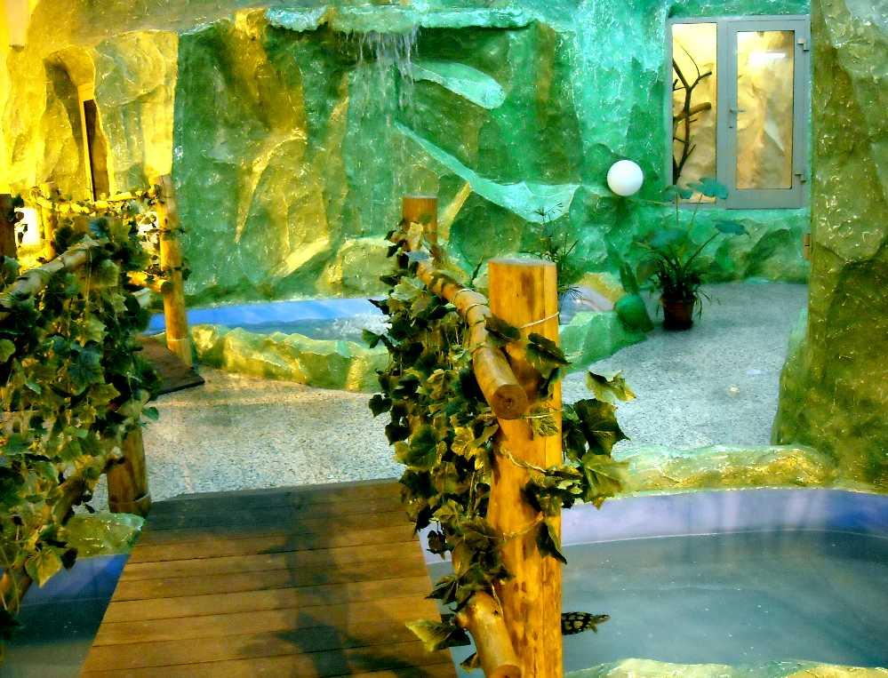 Новосибирский зоопарк (фото 2791)