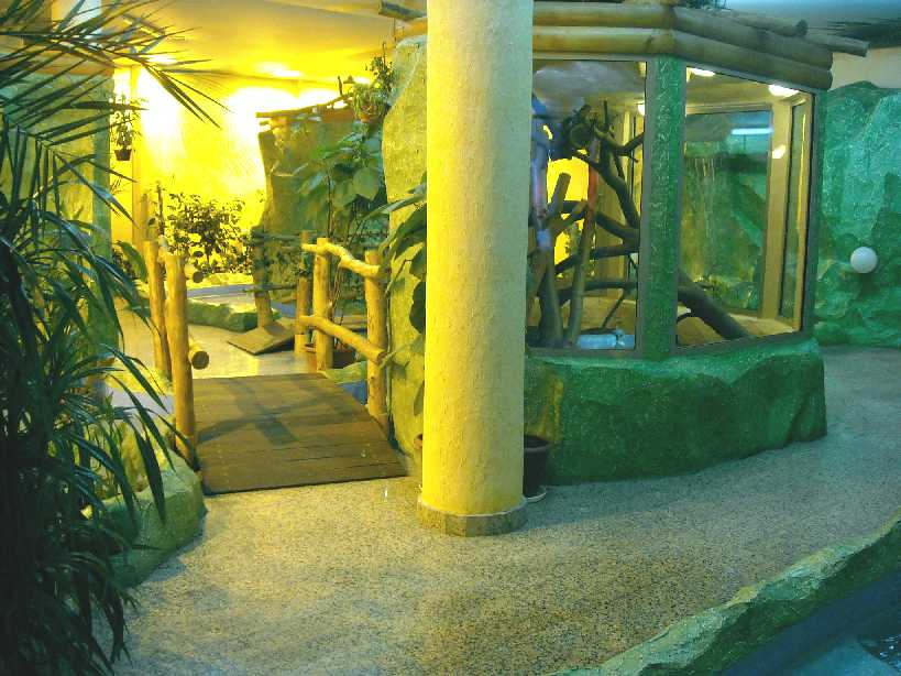 Новосибирский зоопарк (фото 2806)