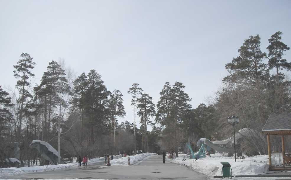 Новосибирский зоопарк (фото 3318)