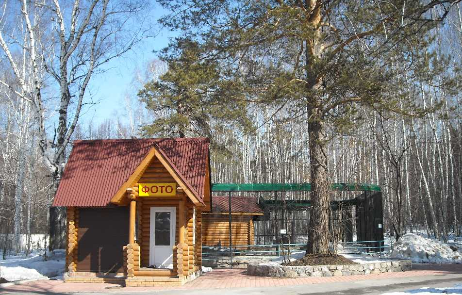Новосибирский зоопарк (фото 5850)