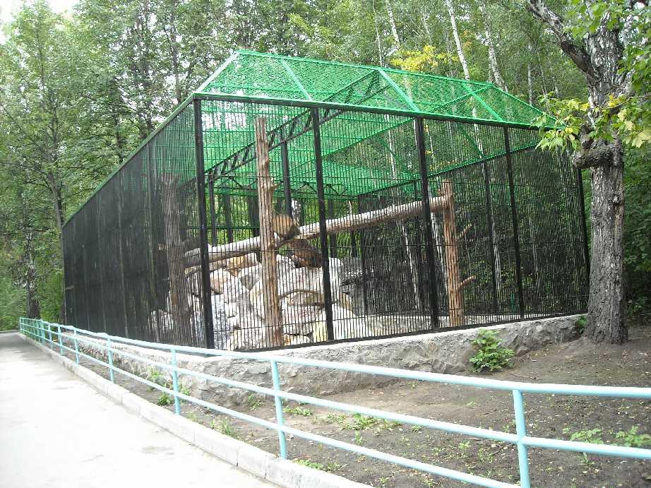 Новосибирский зоопарк (фото 6807)