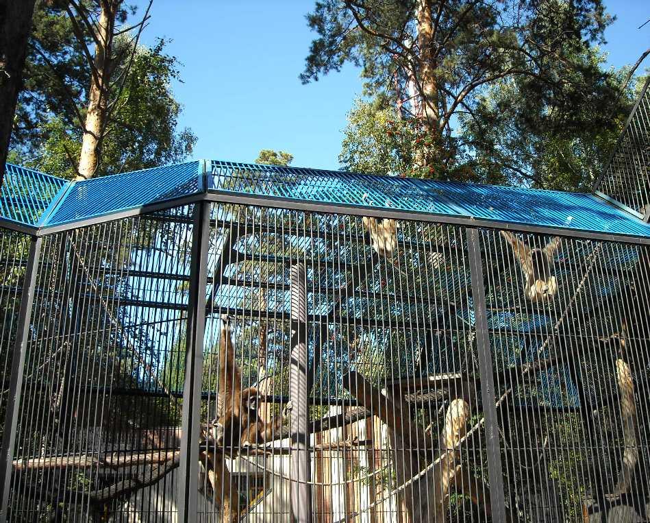 Новосибирский зоопарк (фото 7047)