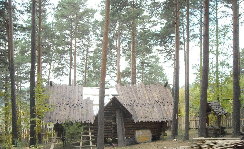 Новосибирский зоопарк (фото 9301)